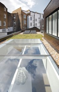 green roof with large skylight