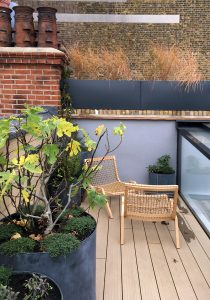 Marylebone Penthouse, roof terrace