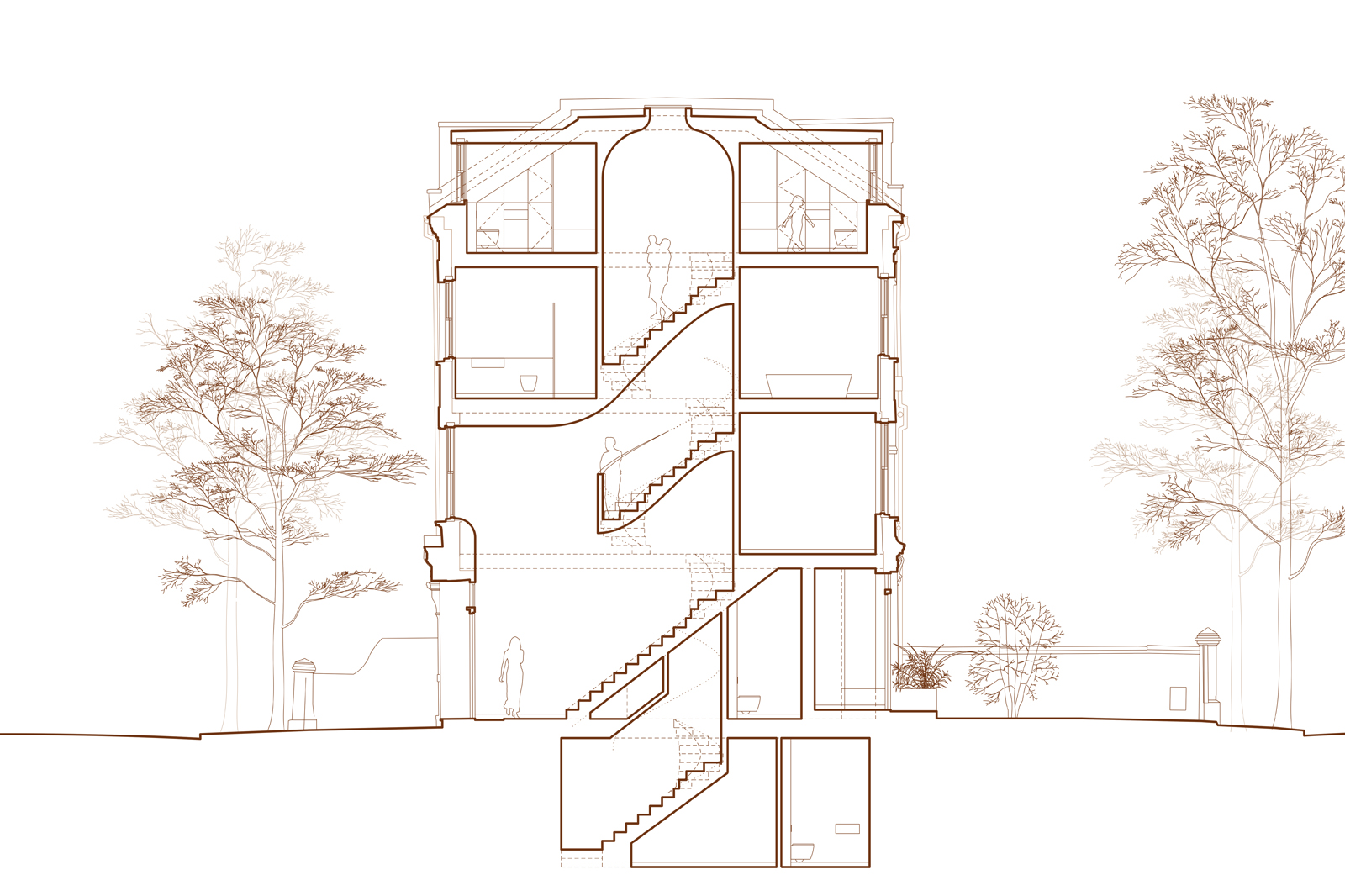 Hamilton Gardens Townhouse: proposed section
